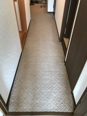 施工前 廊下カーペット