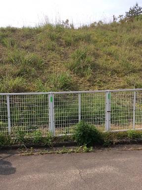 施工前 フェンス