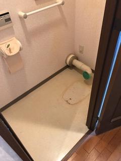 施工中 トイレ床清掃