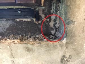 仙台リフォーム事例 原因調査 解体漏水跡