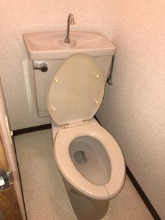 クリーニング後トイレ